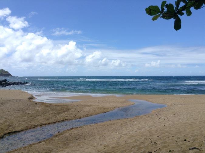 seastream
