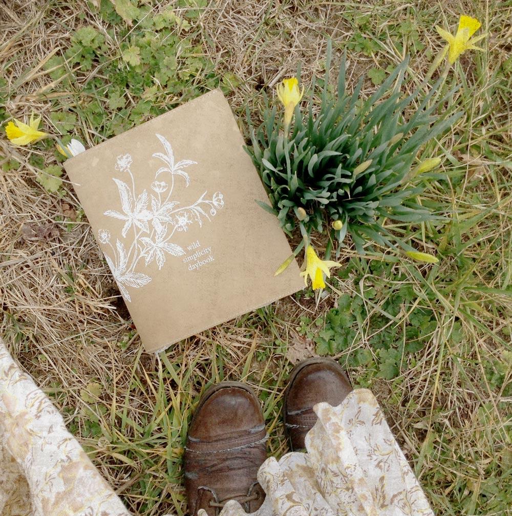 daffodil-daybook