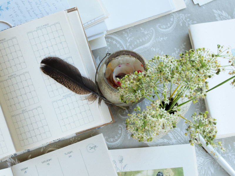 making-plans-sep-daybook