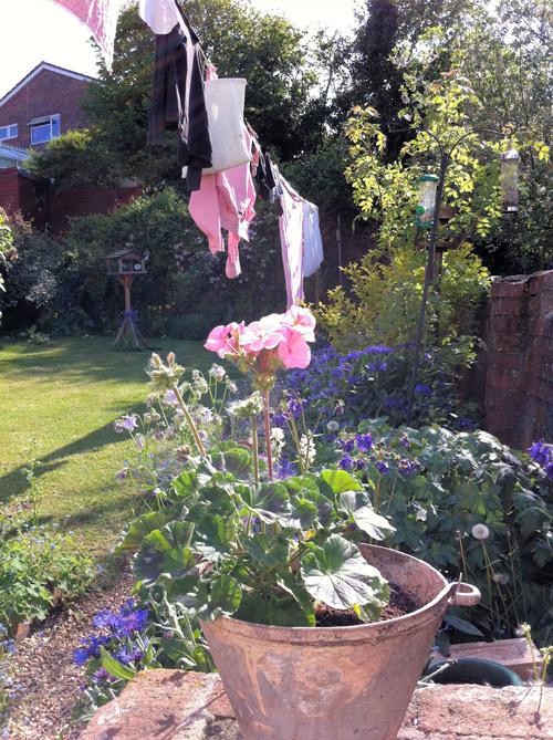 jane-gardenlaundry