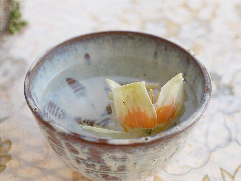 blossom-bowl